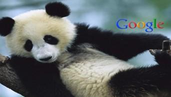 Panda апдейт