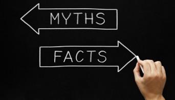 факты о миралинкс